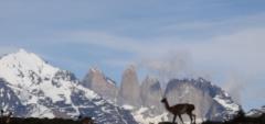 Inez---Patagonia