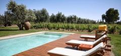 Club Tapiz - Pool & vines