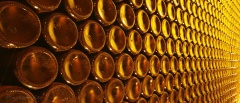 Mendoza and the Wine region - wine bottles